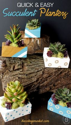 If you love succulents but have not been blessed with a green thumb...you should take a look at today's Quick and Easy Mini Succulent Planter DIY Project