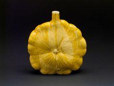 Charles Lakofsky by American Museum of Ceramic Art, via Flickr