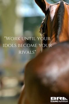 """""""Work until your idols become your rivals"""" horse quote - Horse life Equine Quotes, Equestrian Quotes, Equestrian Problems, Horse Riding Quotes, Horse Love Quotes, Horse Jumping Quotes, Horse Sayings, Cavalo Wallpaper, Inspirational Horse Quotes"""