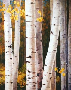Giclee Print Fall Quaking Aspen Trees White Gold by sagewest