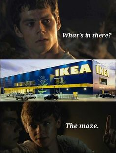 funny the maze runner - Google zoeken This shouldn't have made me laugh so hard but it did. It's funny cause it's true.
