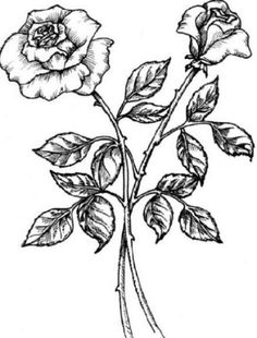 simple black and white drawings - Google Search