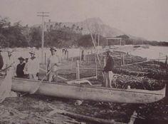No date Outrigger Canoe, Vintage Hawaii, Hawaiian Islands, Oahu, Places, Nature, Painting, Diamond, Hawaian Islands