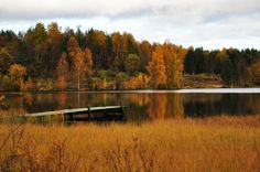 Bergnäset, Autumn, via Flickr.