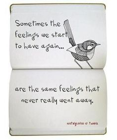 birdie sayings | all about love, bird, dichos, feelings, feelings quotes, illustration ...