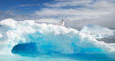 Таяние морского льда нарушает баланс парниковых газов ...