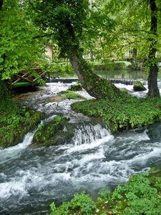 River Vrelo in Tara mountain, Serbia.