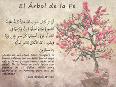 Coran Islam, Dice, Quran, Truths, Amor, Quran Verses, Choirs, Salta, Rosario