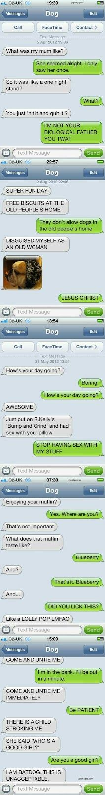 Top 5 Hilarious Text Messages ft. #Funny #Dogs