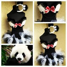 Adorable Panda outfit by Electric Laundry. <3
