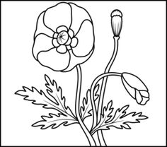 Poppy - Coloring Page