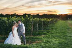 Wedding at Casa Larga Vineyard, Fairport, NY. Wedding Images, Beautiful Sunset, Vineyard, Dream Wedding, Groom, Bride, Couple Photos, Amy, Photograph