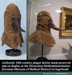 Authentic century plague doctor mask preserved and on display at the Deutschen Medizinhistorischen (German Museum of Medical History) in Ingolstadt Black Plague Mask, Plauge Doctor, Creepy Facts, Fun Facts, Medical Pictures, Black Death, Interesting History, Interesting Facts, 16th Century