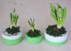 Planter Pots, Play Dough
