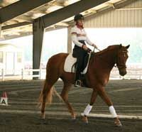 Spiraling can be done at any gait, and it will help your horse learn to balance himself, to be steady and trust your aids. By teaching your horse to spiral, you can improve transitions, create a more balanced and responsive horse, move a western pleasure horse on and off the wall, and maneuver a roping  horse in the box.    Begin the exercise on a 20-meter circle, tracking left at a walk.    Take a look at how your aids should work: http://americashorsedaily.com/spiraling-into-a-better-ride/