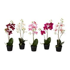 $7.99 FEJKA Artificial potted plant IKEA Lifelike artificial plant that remains looking fresh year after year.