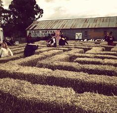 hay bale maze during clunes booktown festival