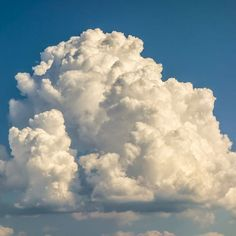 Clouds are heavy! In fact, a medium-sized cumulus cloud weighs about the same as 80 elephants. This is due to all the water they contain (upwards of 500 million grams worth). So why don't they simply fall out of the sky? Well, the weight is spread out into trillions of tiny water droplets over a great distance.