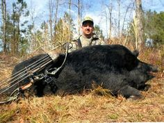Big hog by Randall Addison - OUTDOORSMAN.com