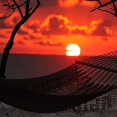 Sunsets, Relax, Celestial, Outdoor, Outdoors, Outdoor Living, Garden, Sunrises, Sunset