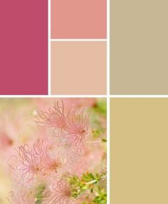 love the pinks in this pallette