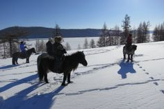 Our Lunar New Year horse ride in Mongolia is guaranteed for 2016! - http://www.mongolia-travel-and-tours.com/tours/horse-riding-tours/tsagaan-sar-orkhon-winter-horse-riding-tour-mongolia.html