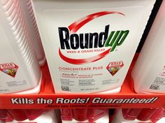 """Check out the Institute of Science in Society post: """"A Roundup of Roundup® Reveals Converging Pattern of Toxicity from Farm to Clinic to Laboratory Studies."""" http://www.i-sis.org.uk/Roundup_of_Roundup.php #GMO #Monsanto"""