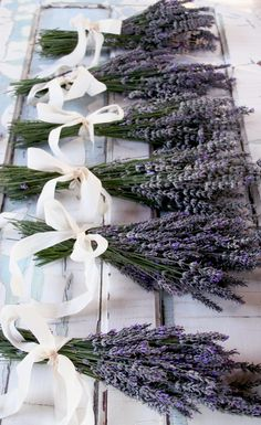 Freshly picked lavender in gorgeous soft bows. // These would be beautiful and unique bridesmaid bouquets.