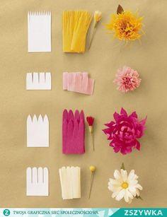 Zobacz zdjęcie Kwiaty z bibuły prasowanej. Szablon i efekt końcowy. w pełnej rozdzielczości