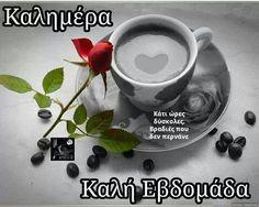 Good Evening My Coffee Friends! I Love Coffee, My Coffee, Morning Coffee, Coffee Cups, Tea Cups, Good Morning Good Night, Love Rose, Meeting New People, Chocolate