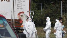 Hallan 50 inmigrantes ilegales asfixiados en un camión refrigerado - http://lea-noticias.com/2015/08/27/hallan-50-inmigrantes-ilegales-asfixiados-en-un-camion-refrigerado/