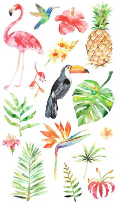This article is not available - Watercolor tropical clipart summer flamingo flower pineapple - Watercolor Clipart, Watercolor Pattern, Watercolor Flowers, Watercolor Paintings, Drawing Flowers, Painting Flowers, Diy Painting, Pattern Drawing, Fruit Painting