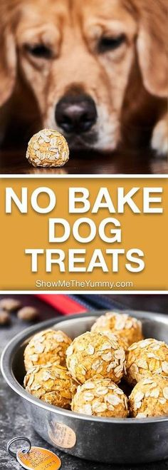These Homemade Dog Treats are full of organic ingredients like pumpkin, peanut butter, bacon, applesauce, yogurt and require NO baking! Your fur baby will surely go nuts for these healthy No Bake Dog Treats, Diy Dog Treats, Healthy Dog Treats, Puppy Treats, Organic Dog Treats, Organic Dog Food, Organic Baby, Dog Biscuit Recipes, Dog Treat Recipes