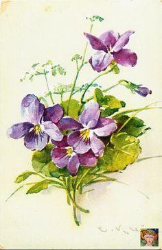 Resultado de imagen de flores violeta vintage