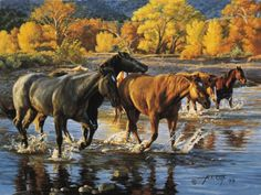 """Add a frame! 12"""" X 16"""" Mini Canvas Transfer only. Click here: http://www.TimCox.com/products/12-x-16-driftwood-frame """"HORSES OF THE CREEK"""" SIGNED AP PRINT 12""""X16"""" $ 75.00 """"HORSES OF THE CREEK"""" SIGNED"""