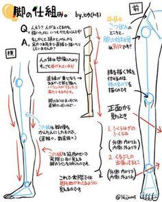 【pixiv】人物の描きかた講座!!!顔、手、足、筋肉の描きかたを学ぼう!! - NAVER まとめ