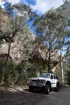 #4wding in #Newnes State #Forest in our Toyota #Landcruiser 80 series.