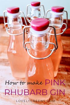 How to make homemade pink rhubarb gin with just three simple ingredients. Also includes expert tips on how to grow your own rhubarb plants at home ODLA GIN FIZZ 😎 Gin Fizz, Homemade Alcohol, Homemade Liquor, Gin Recipes, Canning Recipes, Recipies, Jelly Recipes, Salad Recipes, Cucina