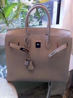 One day when I'm a billionaire, I will own a hermes bag and go to hermes bag exchange parties :)