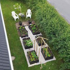 När man målar huset och får svart på vitt (eller brunt på grått) att man har lite sten kvar att lägga och kapa. 😂 #trädgård #odla #odlingslådor #pallkrage #pallkragar #målahus #citronträdgården Garden Bed Layout, Backyard Garden Design, Balcony Garden, Garden Beds, Garden Landscaping, Forest Garden, Water Garden, Vegetable Garden, Gingerbread House Designs