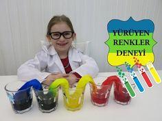Motto Eğitim Bilişim: Okul Öncesi Fen Deneyleri  - Karanfilin Renklenmesi - YouTube