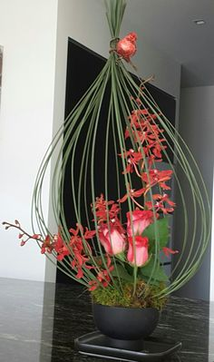 Look at this trendy farmhouse flower arrangements - what an innovative theme Ikebana Arrangements, Hanging Flower Arrangements, Contemporary Flower Arrangements, Beautiful Flower Arrangements, Unique Flowers, Floral Arrangements, Beautiful Flowers, Arte Floral, Deco Floral