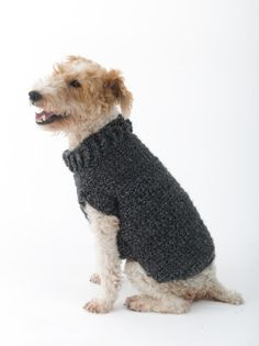 The Poet Dog Sweater is great for a dog who loves the simple things in life.  Crochet the matching beret for yourself for a cute photo-op.