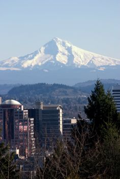 The view of Mt. Hood from Portland on a clear, sunny day
