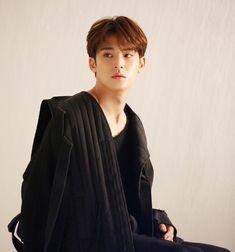 Woozi, Wonwoo, Jeonghan, The8, Seungkwan, Mingyu Seventeen, Seventeen Debut, Vernon, Fandom