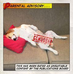 #Beagle censorship