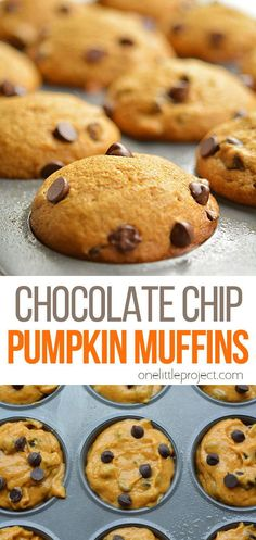 This recipe for chocolate chip pumpkin muffins is AMAZING! It's the perfect combination of pumpkin pie spice and moist, delicious, goodness! They make a hearty snack if you're craving some sweetness! And a delicious breakfast if you are willing to splurge on a few extra calories. (I won't tell anyone, if you won't!) And best of all, the house smells sooooo delicious while they are baking! Yummy Snacks, Healthy Snacks, Yummy Food, Vegetarian Chocolate, Chocolate Recipes, Pumpkin Chocolate Chip Muffins, House Smells, Pumpkin Pie Spice, Dessert Recipes