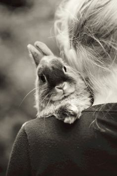 Bunny love ♥