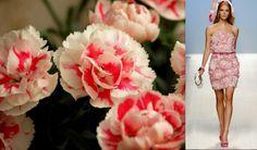 #3 Carnation & Blugirl s/s 2012
