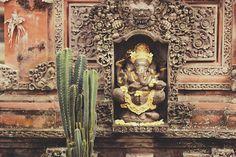 Ubud, Bali - Indonesia @ Elsewhere - travel blog
